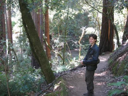 Bro at Muir Woods